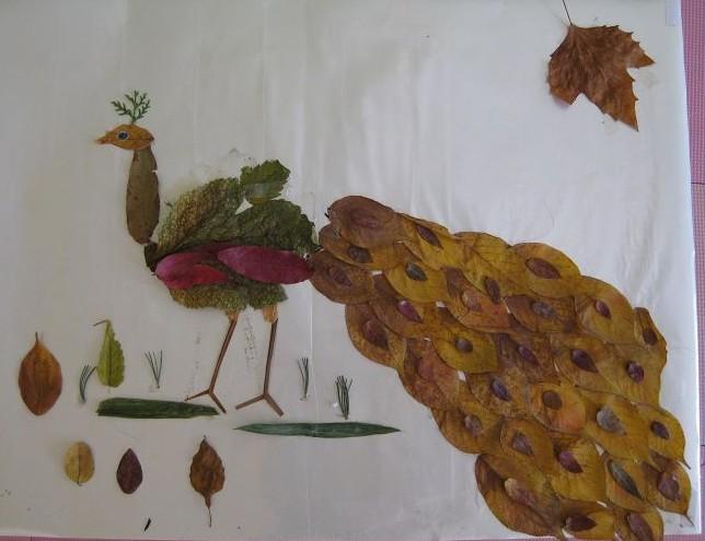 像不像孔雀(和我幼儿园的儿子一起制作的树叶黏贴画)图片