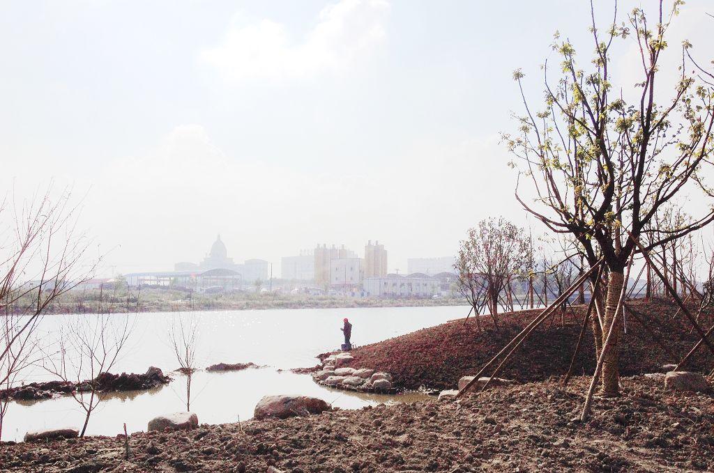 『 关注慈溪 』 滨河公园实景   新城河滨河公园初步形成,公园内坡地