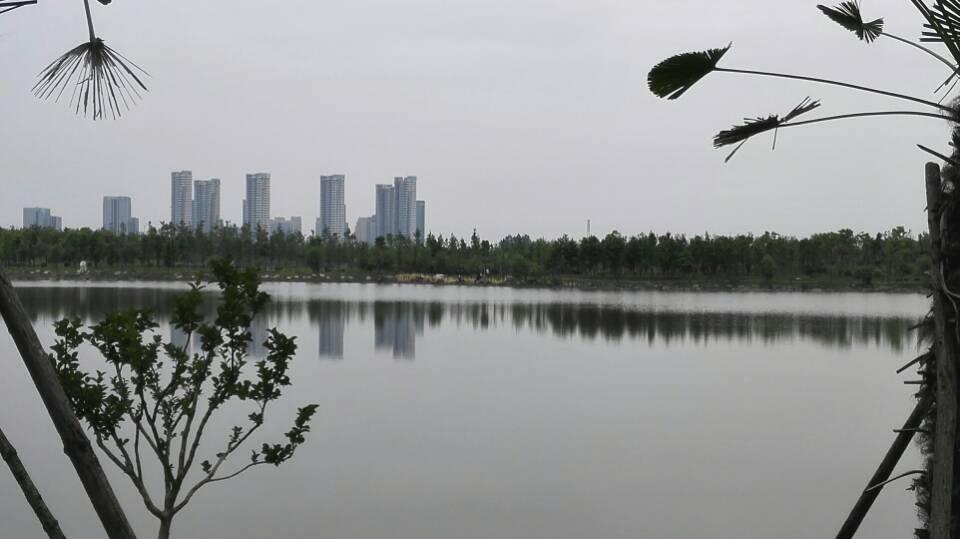 慈溪城市森林公园游玩详解